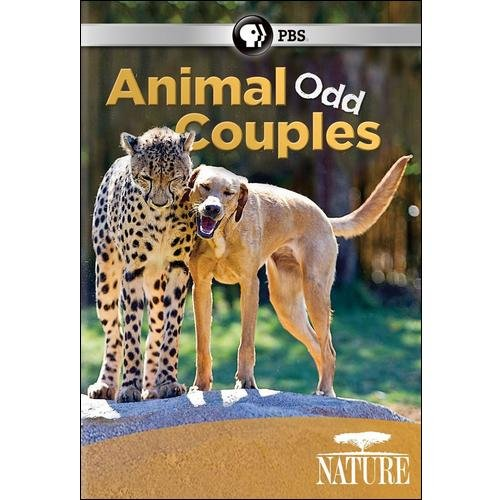NATURE-ANIMAL ODD COUPLES (DVD)