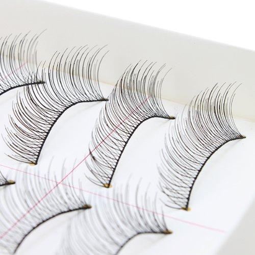 AGPtEK Handmade Natural Fashion Long False Eyelashes For Makeup (10 Pairs)