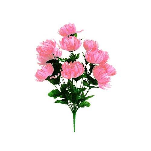 Hikari 56 GIANT Victory Mums Flowers