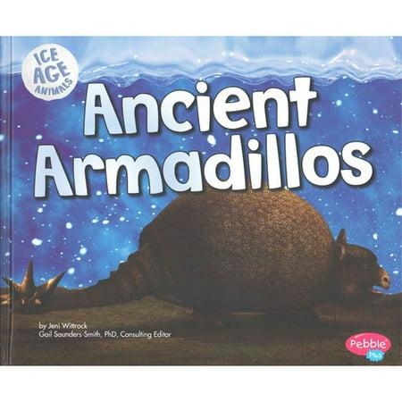 Ancient Armadillos