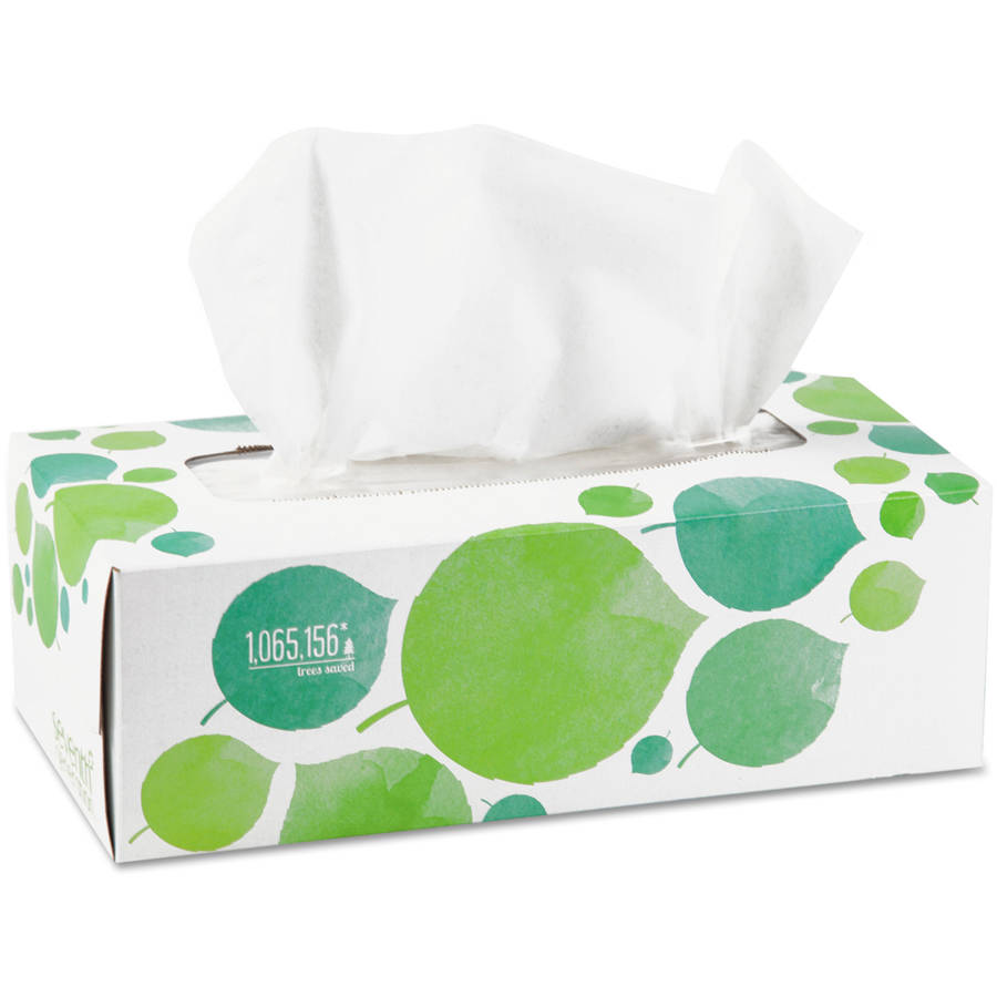Seventh Generation 100 Percent  Recycled Two-Ply Facial Tissue, 175 ct