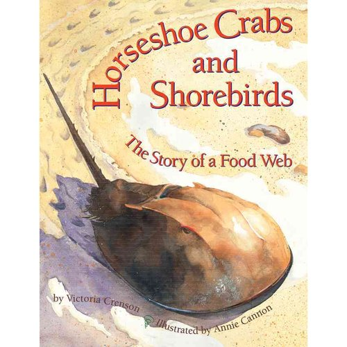 Horseshoe Crabs and Shorebirds: The Story of a Food Web