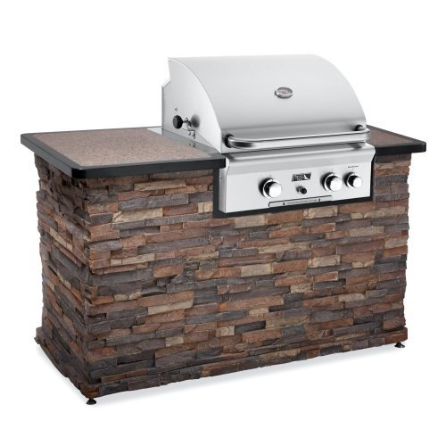American Outdoor Grill 24 in. 2 Burner Built-In Gas Grill with Optional Liner