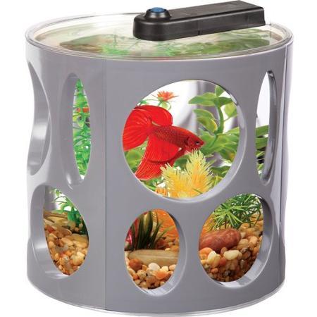 Fish supplies for Betta fish food walmart