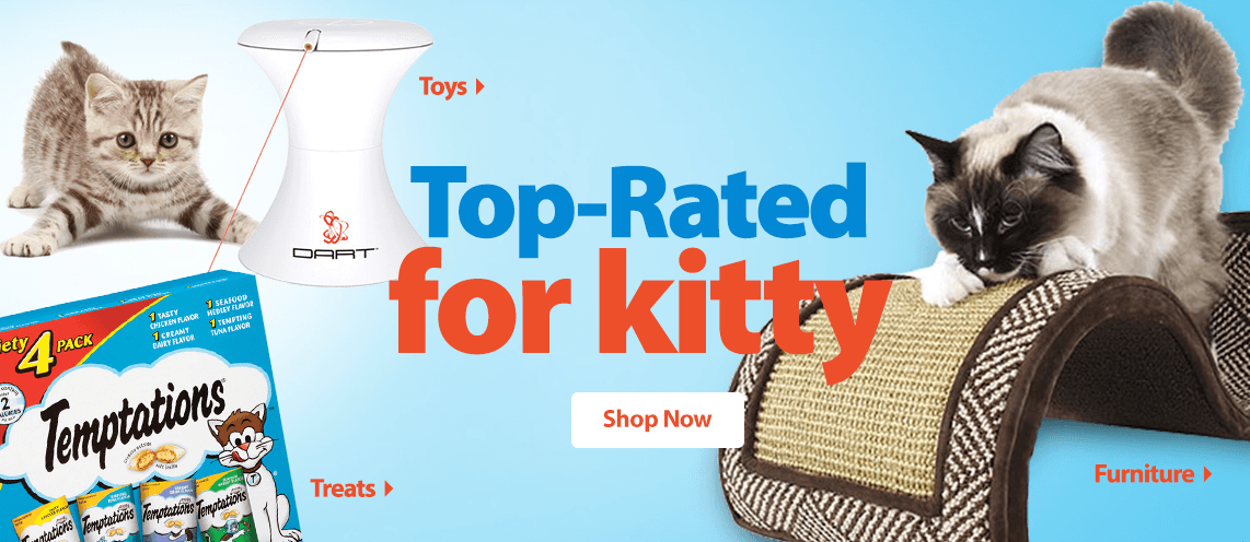 Top-Rated for Kitty