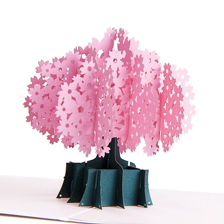 3D Pop Up Greeting Card for All Occasions - Travellers, Romantics, Arbor Lovers - Folds Flat for Mailing - Birthday, Graduation, Get Well, Anniversary, Engagement Gift | Pink Tree ()
