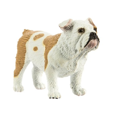 Ltd Best In Show Dogs Bulldog, SHORT, STOCKY, AND SWEET One of the most popular breeds in America today, bulldogs are known for their distinctive pushed-in nose. They.., By