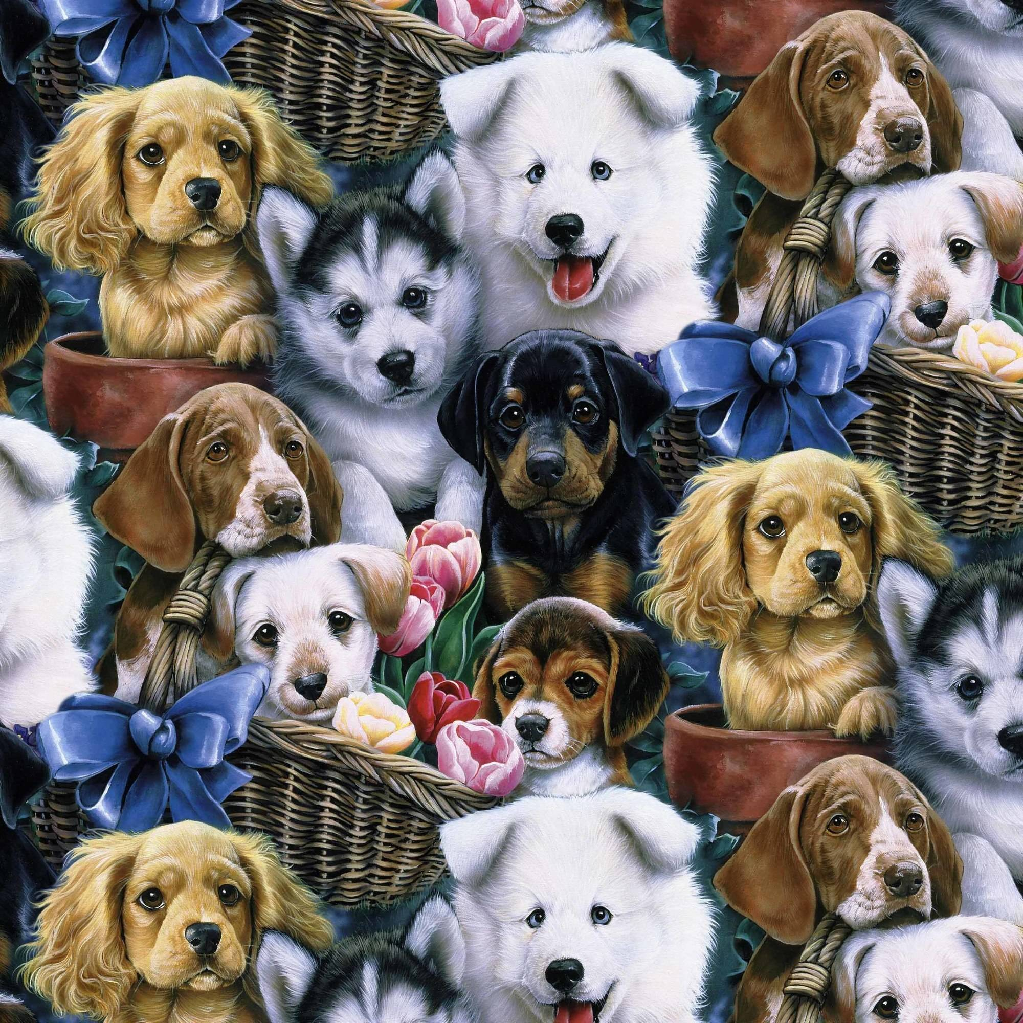 "David Textiles Valentine's Puppies 44"" Craft Cotton Fabric By The Yard"