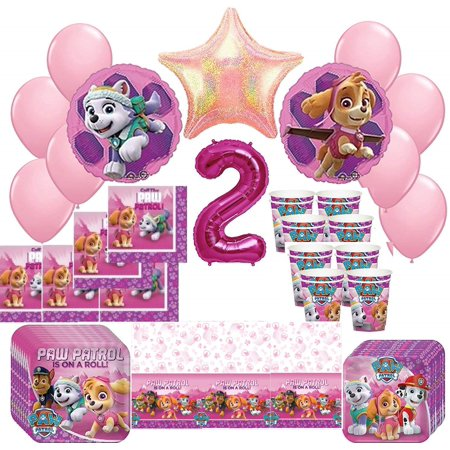Girl Pups Paw Patrol Skye Everest 2nd Birthday Party Pack 52pc