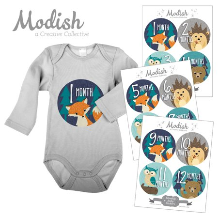 Modish Monthly Baby Stickers, Boy, Woodland Animals, Fox, Bear, Hedgehog, Owl, Baby Photo Prop, Baby Shower Gift, Baby Book Keepsake - Owl Boy Baby Shower