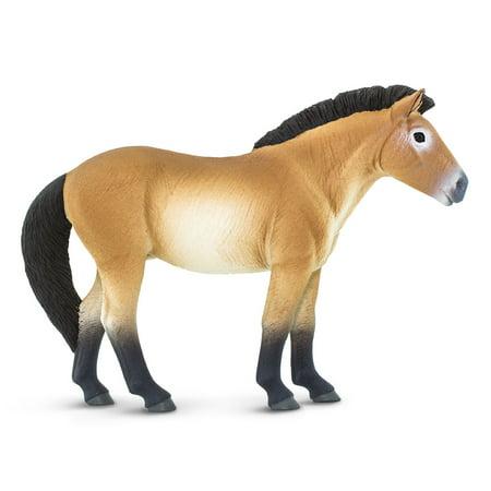 Safari Farm Model Horses Toys (Safari Ltd Przewalskis Horse Animal Educational Kids Toy)
