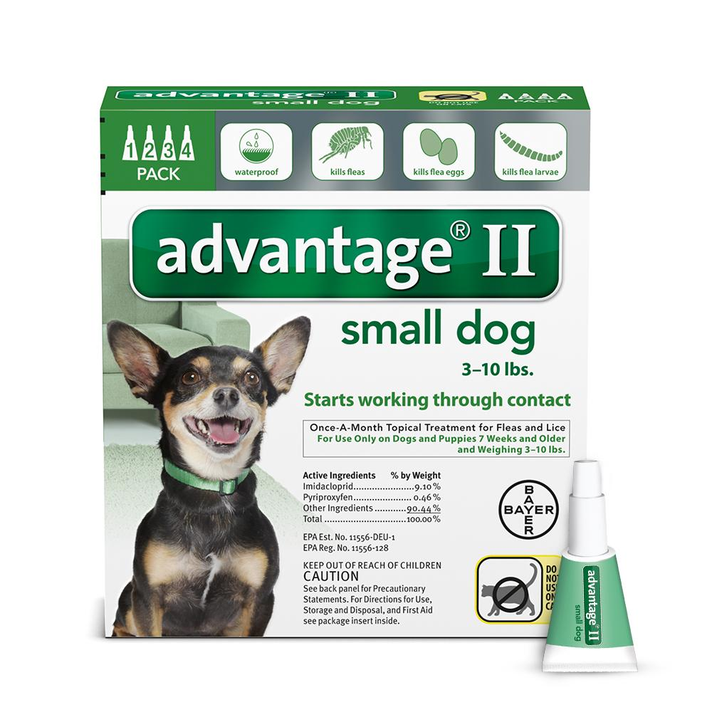 Advantage II Topical Flea and Lice Treatment for Small Dogs, 4 Monthly Treatments