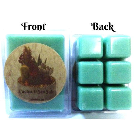 Cactus and Sea Salt Pack of 3.2oz Soy Wax Tarts (6 Cubes Per Pack) Wax Melts