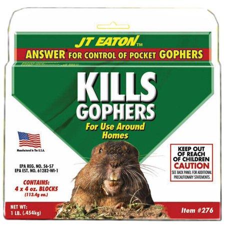 BAIT GOPHER ANSWERS KILLS