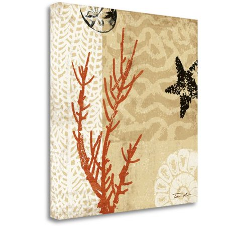 Tangletown Fine Art 'Coral Impressions I' by Tandi Venter Graphic Art on Wrapped (Tandi Venter Coral Impressions)