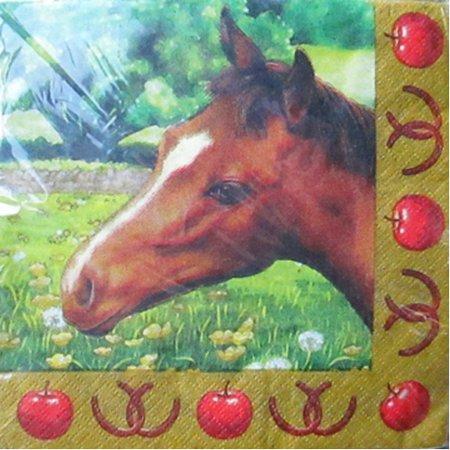 Horse Napkin (I Love Horses Small Napkins (16ct))