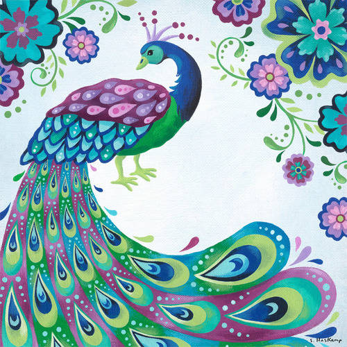 Oopsy Daisy - Floral Peacock Canvas Wall Art 30x30, Steve Haskamp