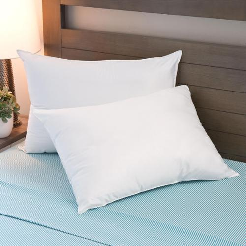 Sleep Protection  MicronOne Basic Hypoallergenic Polyester Pillows (Set of 2) - White