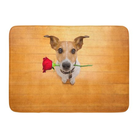 KDAGR Red Crazy Jack Russell Dog in Love on Valentines Day Rose Mouth Cool Gesture Wood Pet Doormat Floor Rug Bath Mat 23.6x15.7 (Titanic Love Scene Jack And Rose In Car)