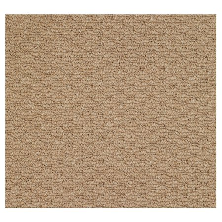 Capel Rugs Shoal Raffia Woven Indoor Area Rug