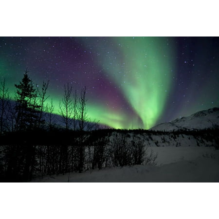 Aurora Borealis VII, Fine Art Photograph By: Larry Malvin; One 36x24in Fine Art Paper Giclee - Aurora Borealis Photo