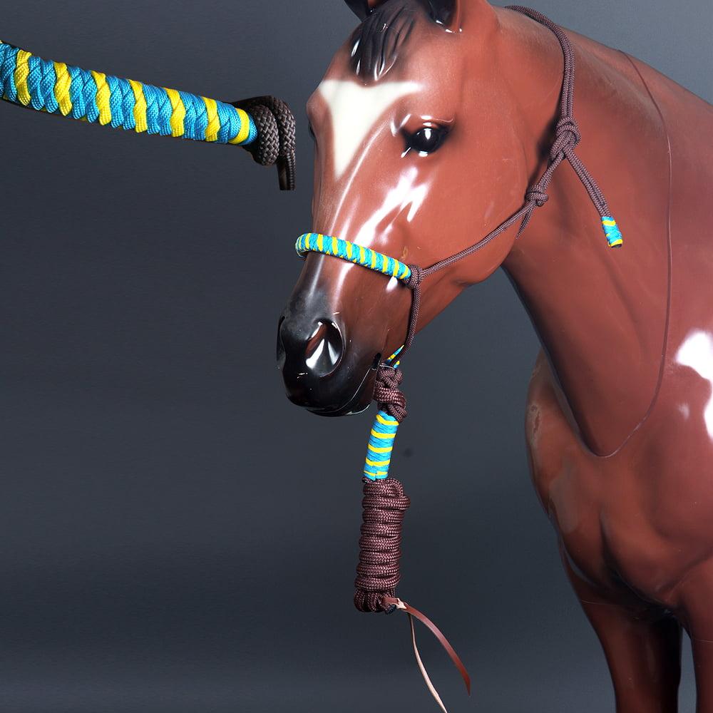CLASSIC EQUINE HORSE TWO TONE  NYLON HALTER TURQUOISE YELLOW