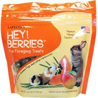 Lafeber Company-Hey!berries Foraging Treats 4 Oz