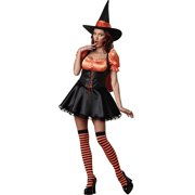 Wicked Wishes Costume