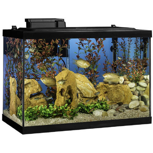 Tetra 20 Gallon Aquarium Kit With Filter, Heater, LED Light and Plants