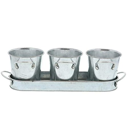Herb Planter (Barnyard Designs Succulent Herb Pot Planter with Tray for Indoor and Outdoor Use Rustic Vintage Galvanized Metal Herb Plant Holder (Set of 3))