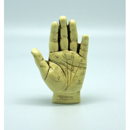 Palmistry Hand Model Sculpture Figurine Fortune Telling Palm Reading Decoration