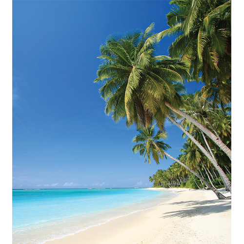 Beach Photographic Wall Panel Decals