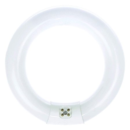 Recessed Fluorescent Light (Luxrite FC8T9/CW 22-Watt 8 INCH T9 Fluorescent Circular Light Bulb, 4100K Cool White, 1180 Lumens, G10Q 4-Pin Base (10 Pack) )