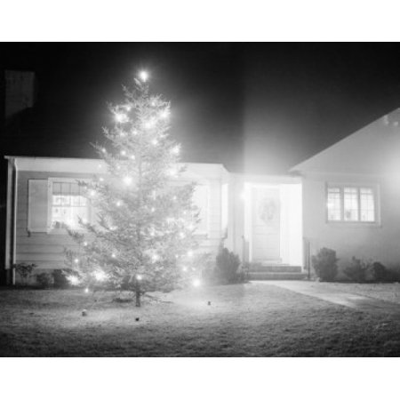 - Illuminated christmas tree outside suburban home Poster Print