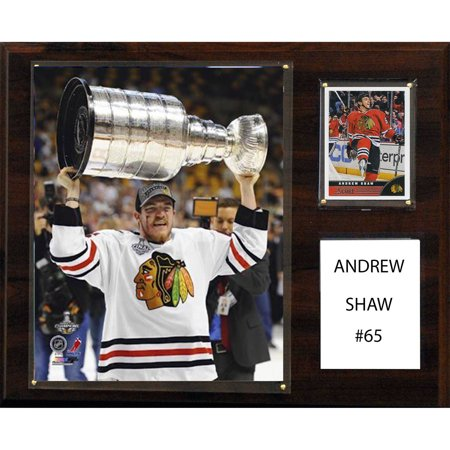 C&I Collectables NHL 12x15 Andrew Shaw Chicago Blackhawks Player