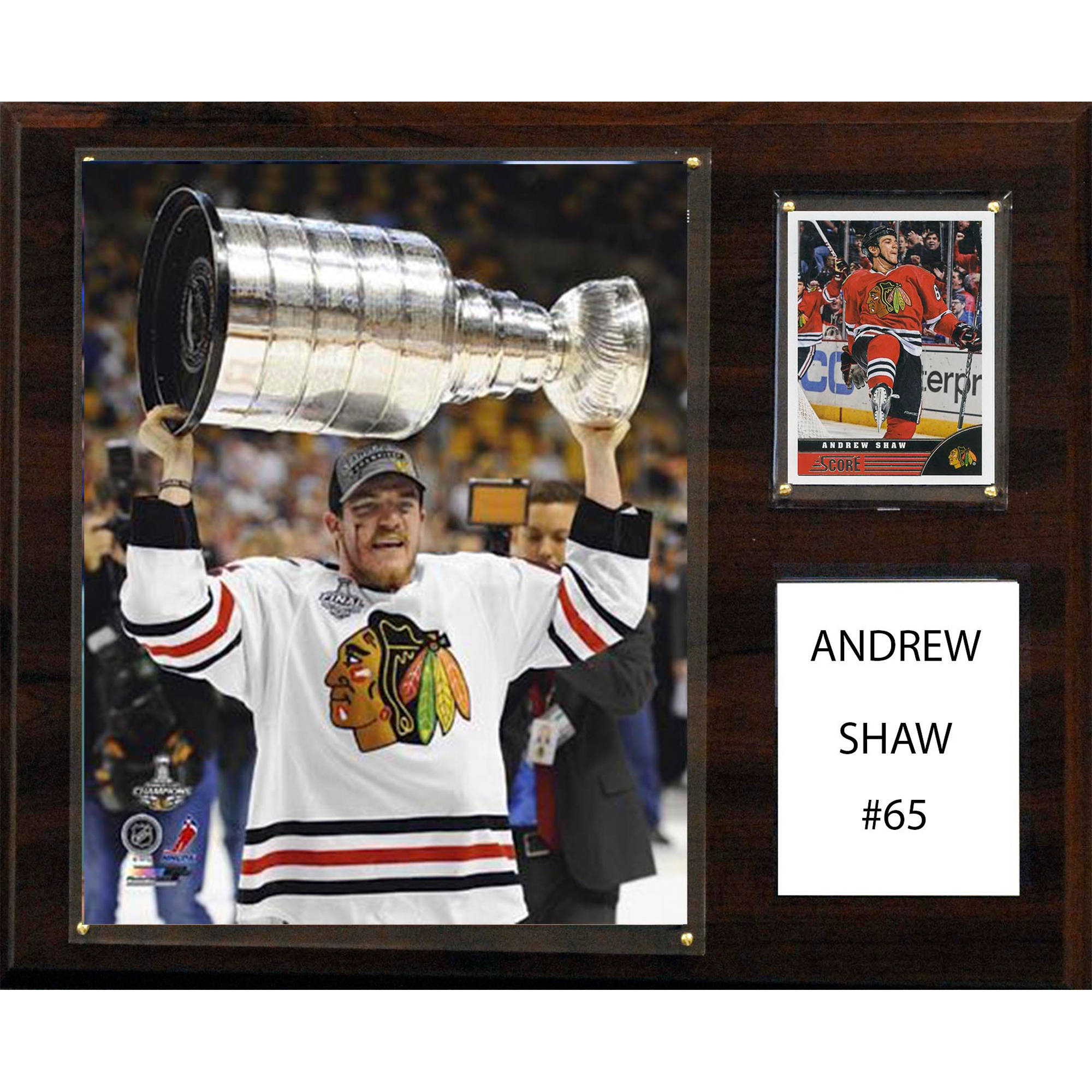 C&I Collectables NHL 12x15 Andrew Shaw Chicago Blackhawks Player Plaque
