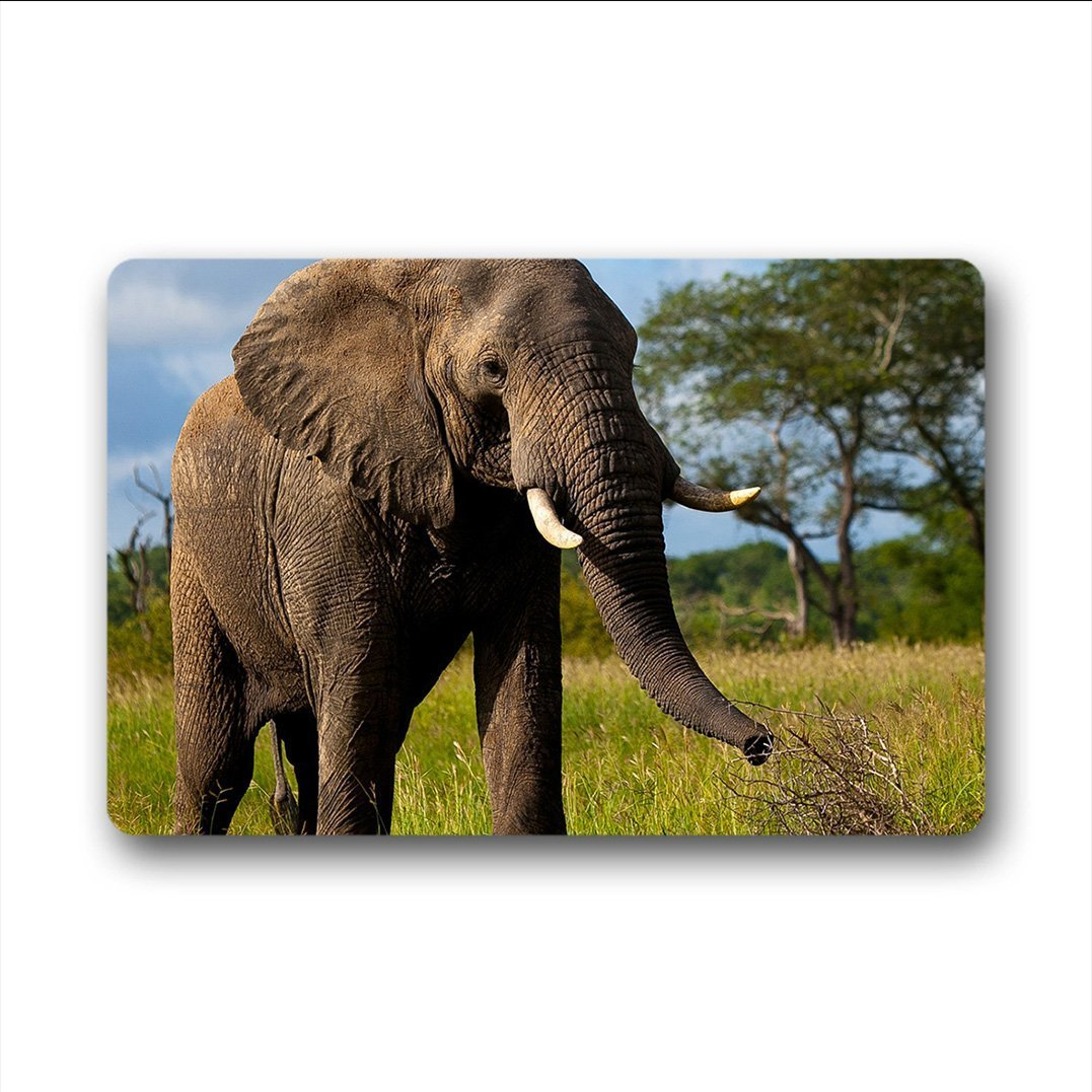 Elephant Doormat Cushioned