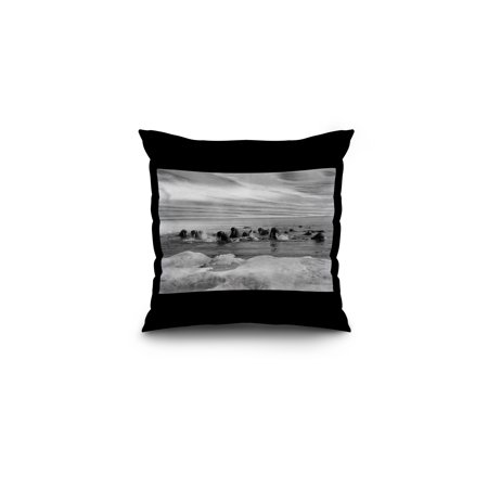 Walrus among the Ice Floes in Bering Sea Alaska Photograph (16x16 Spun Polyester Pillow, Black