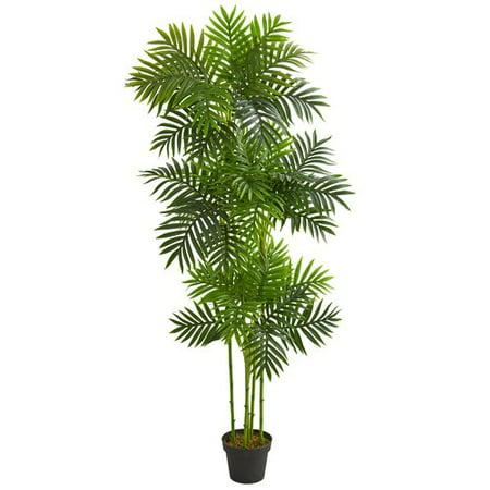 Bay Isle Home Phoenix Floor Palm Tree In Planter Walmart Com