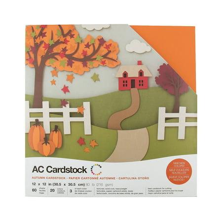 Fun Express - Autumn Cardstock Variety Pack (60pc) for Fall - Craft Supplies - Scrapbooking - scrapbook paper - Fall - 60 Pieces (Scrapbooking Supplies Paper)