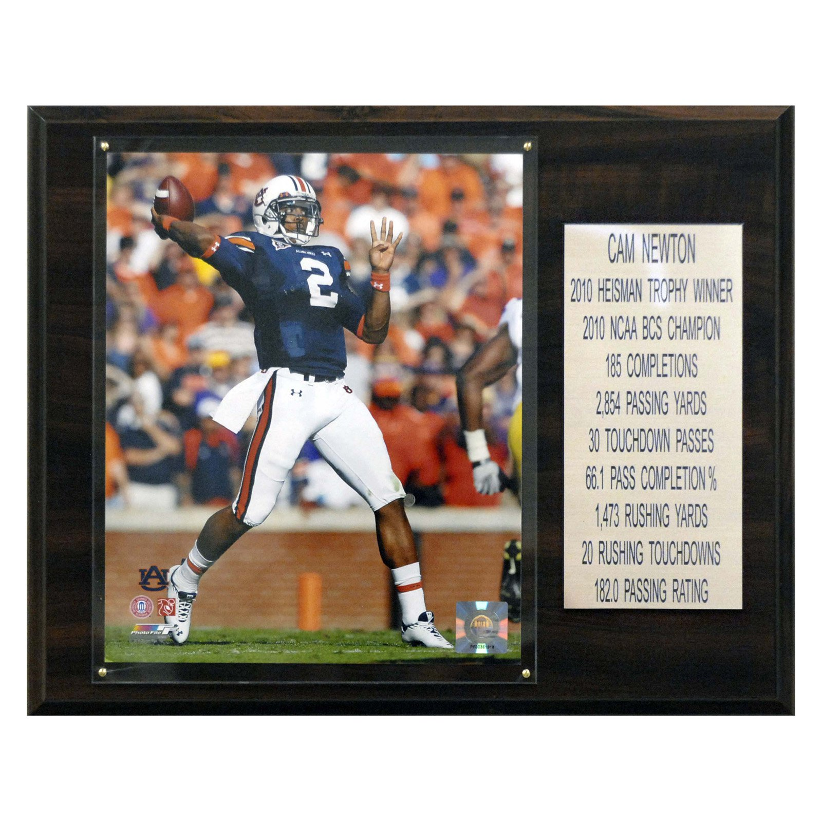 C&I Collectables NCAA Football 12x15 Cam Newton Auburn Tigers Career Stat Plaque
