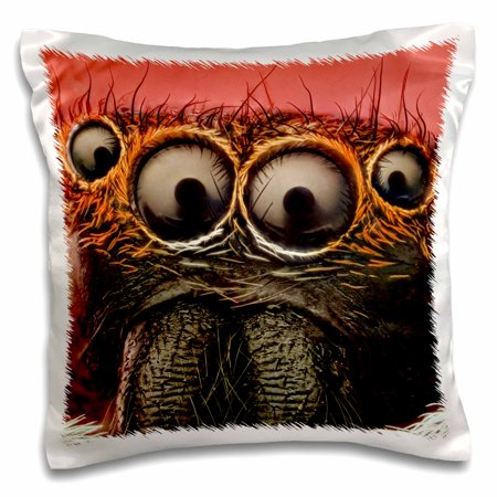 3dRose Jumping spider - Pillow Case, 16 by 16-inch