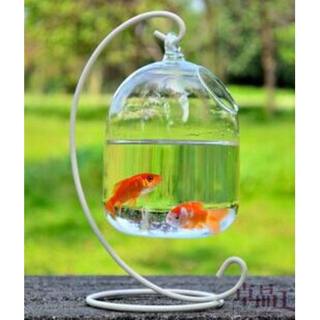 "Image of ""6x4"""" Hanging Mounted Fish Tank Hanging Pot Glass Planter Vase Mini Fish Tank Aquarium Hydroponic Plant Container Home Decor"""