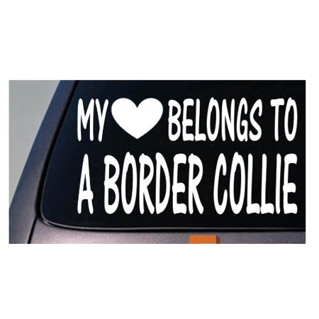 My heart belongs to a Border Collie *D959* sticker decal