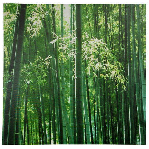 Oriental Furniture Bamboo Photographic Print on Wrapped Canvas