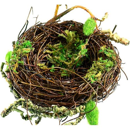 Decorative Bird Nests - Craft Bird Nest 3in. Diameter natural brown and moss green -- (Brown Bird Craft)