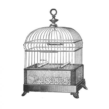 Etchings Birdcage - Gable top filigree base Stretched Canvas - Catalog Illustration (12 x - Filigree Bird