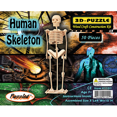 Puzzled 3D Puzzle Wood Craft Construction Kit, Human Skeleton