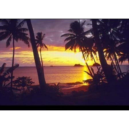 Brand New  Sunset Lagoon  Beverly Factor 36X24 Photograph Art Print Poster Tropical Sunset Palm Trees Ocean Beach  High Quality