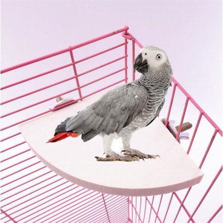 Wooden Platform for Birds,Parrot Bird Cage Perches Round Coin Stand Budgie Toys Bird Stand